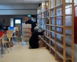 Boekenbeurs Glanerbrug 2017 opbouw (27)